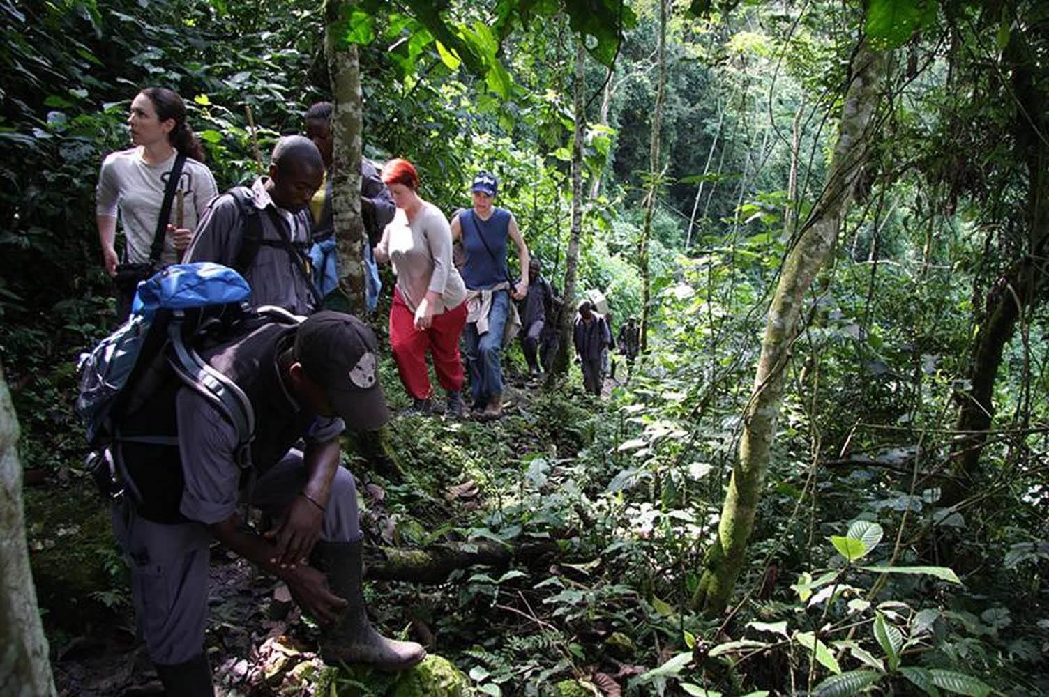 bestig-kilimanjaro-paa-bryllupsrejse-med-africa-tours Bryllupsrejse til Afrika